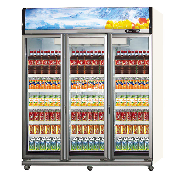 Display Cooler Multi Door
