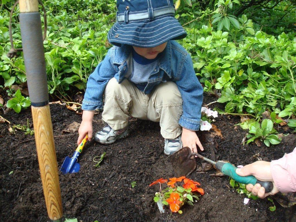 pupuk kompos terbaik
