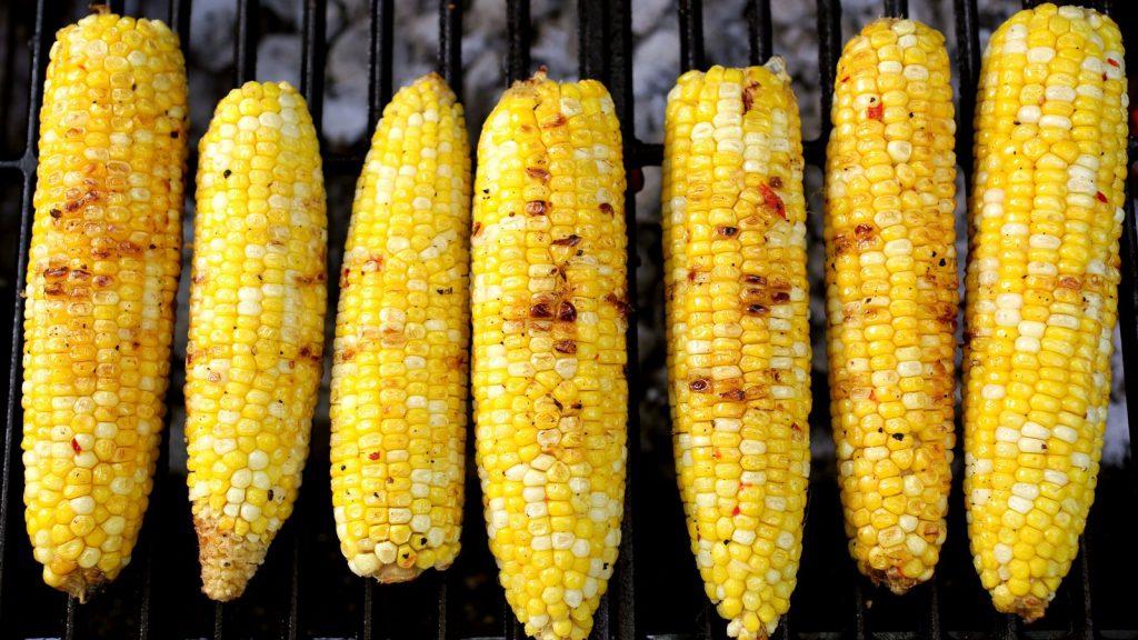 tongkol jagung